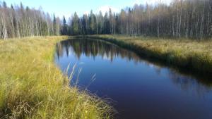 Saarisenojanniityn lintuvesi ja laskeutusallas. Toteutettu syksyllä 2012