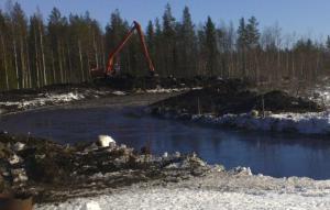 Kosteikon pohjoislaitaan syntyy vaihteleva vesialue