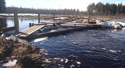 Kalamäen tulvapato johtaa vedet ohitusuomaan