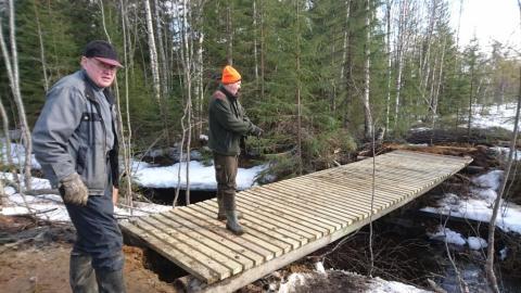 Kokko-ojan silta