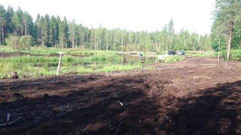 Riistapelto sijaitsee näkyvällä paikalla. Nuolukivi on kuvan vasemmassa reunassa paalun päässä.